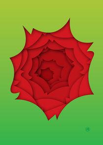 Rose by Maarten Rijnen