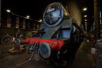 The Green Knight - NYMR by Martin Williams