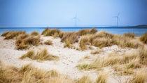 Dunes von Thomas van der Willik