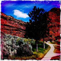 Utah Red Rocks von Jenny Allport