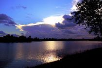 New Sunset by Zoila Stincer