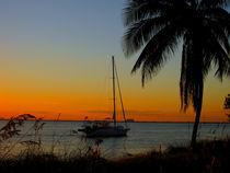 Coast View - Sunset von Zoila Stincer