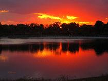 Red Lake by Zoila Stincer