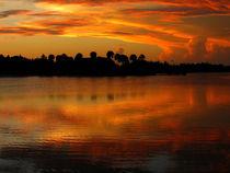 Golden Lake von Zoila Stincer