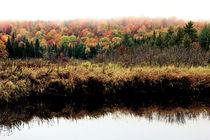 Adirondack Spectrum by Benjamin Wilkinson