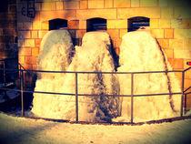 frozen. von chaunceyphotography