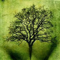 Baum des Lebens  von freedom-of-art