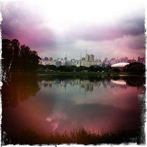 Sao Paulo Skyline von Jenny Allport