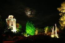 Botanischer Garten illuminiert 10 von daniid