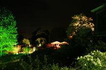 Botanischer Garten illuminiert 7 von daniid