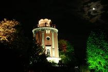 Botanischer Garten illuminiert 5 von daniid