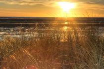 Grassy British Sunset