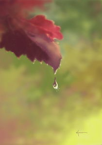 Autumn Rain by Kume Bryant