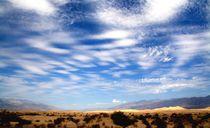 Death Valley von Julia  Berger