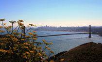 Golden Gate Bridge von Julia  Berger