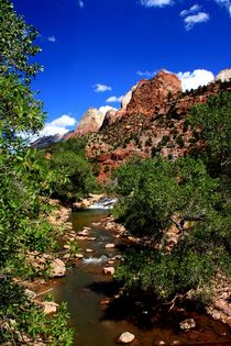 Zion Nationalpark by Julia  Berger