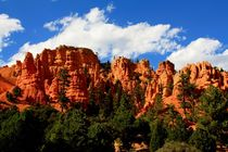 Bryce Canyon by Julia  Berger