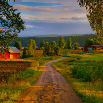 Gravel road in evening sunlight by kbhsphoto