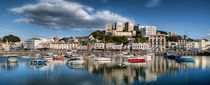Torquay Harbor Panoramic von Louise Wagstaff