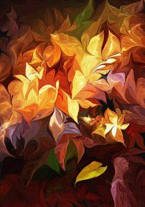 Garden Glow von David Lane