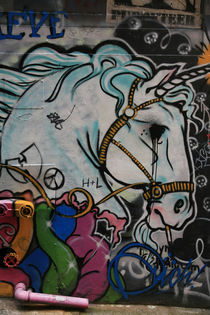 unicorn by Michael Lindegger