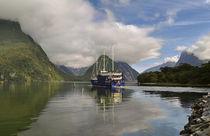 Milford Sound Neuseeland von Markus Strecker