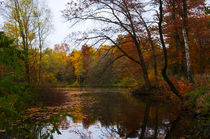 Herbst am See by AD DESIGN Photo + PhotoArt