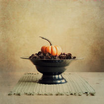 autumn by Priska  Wettstein