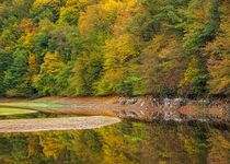 Autumn - Fall - Reflections in the Sauer river in Luxembourg by Maciej Markiewicz