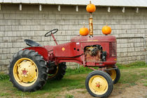 OLD TRACOR WITH PUMPKINS by John Mitchell