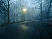 Fog Moon von Lucie Gordon