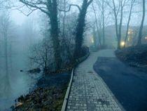 Einsamer Weg im Nebel by Lucie Gordon