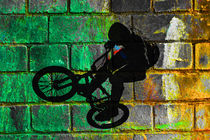 BMX II von David Pringle