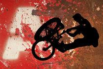 BMX by David Pringle