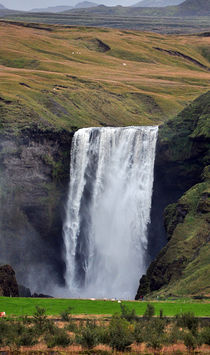 Skogafoss the Mighty by David Halperin