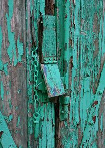 Railway carraige door by camera-rustica