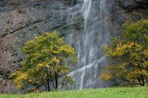 Wasserfall von Bettina Schnittert