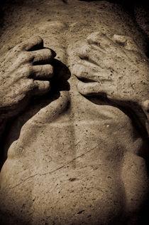Emotional stone von Lars Hallstrom