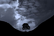 Lightning at Sycamore Gap by David Pringle