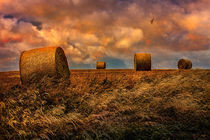 The Hayfield by Chris Lord