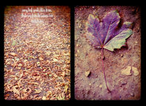every leaf speaks of bliss to me von Sybille Sterk
