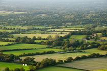 British Countryside by Mark Upfield
