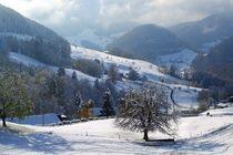Swiss Snow Scene von John McCoubrey