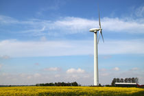 Windkraft-24-1