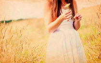 Picking Daisies by Dawn Cox
