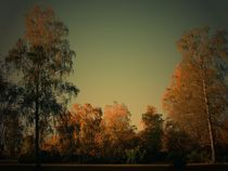 Die Sonne geht auf by Elke Balzen
