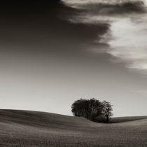 field Island  by Jaromir Hron