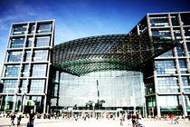Berliner Hauptbahnhof von feli