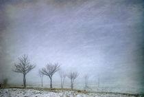 Stormy wheather von Guido Montañes