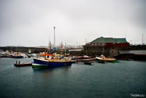 Keflavik seaport - Iceland by Federico C.
